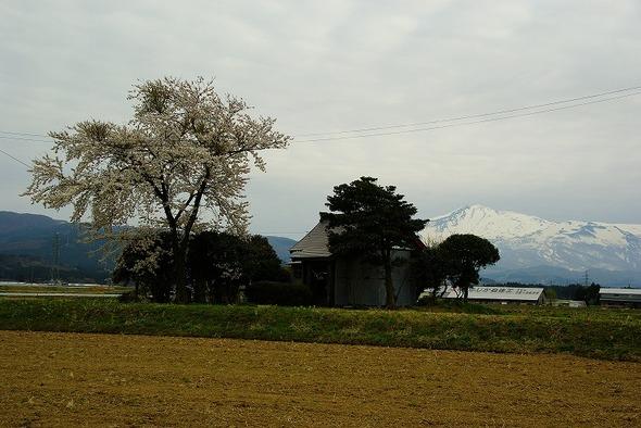 Ki02as